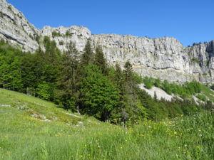 Mont d'Or depuis Piquemiette