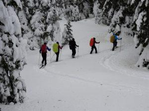 Ski de rando nordique avec un groupe au Grand Cunay